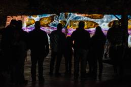 Luminaria 2019 Illuminated Image with Crowd